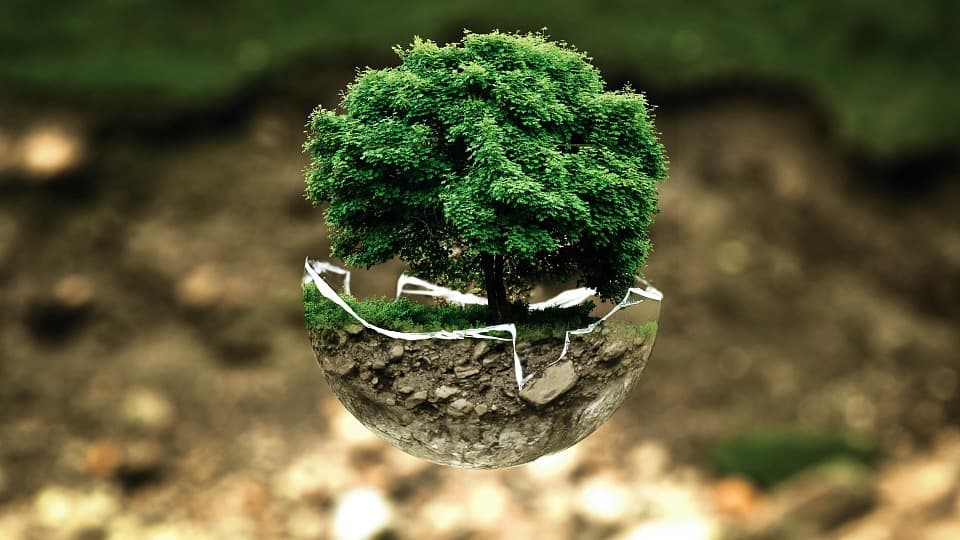 The Advantages of Working with an Environmental Consultant for ISO 14001:2015